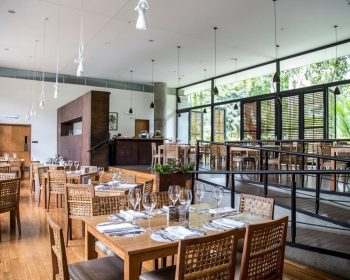 In-Situ-Restaurant-Medellín-Where-To-Eat-Guide
