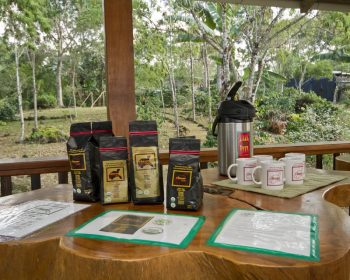 Medellin-Colombian-Coffee-Tour-3
